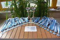 kadettenmurten-schwimmwettkampf16-00