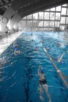 kadettenmurten-schwimmwettkampf16-05