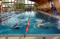 kadettenmurten-schwimmwettkampf16-13
