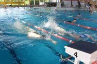kadettenmurten-schwimmwettkampf17-11