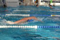 kadettenmurten-schwimmwettkampf17-13